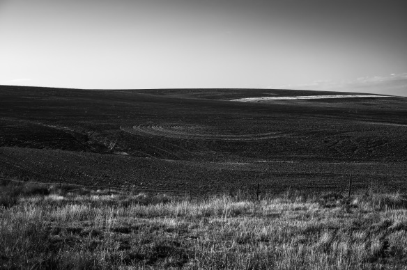 Plowed Field, Washington County, CO-1